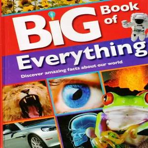 Big Book of Everything