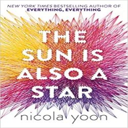 The Sun is also a Star books