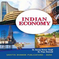 Indian-Economy books