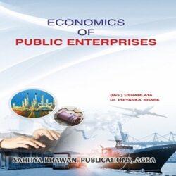 Economics-of-Public-Enterprises books